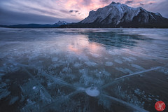 X marks the spot (Kasia Sokulska (KasiaBasic)) Tags: canada alberta rockies mountains winter landscape snow cold ice beauty nature abraham lake methene bubbles sunrise frozen