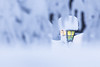 lantern on a snowy winter day (VisitLakeland) Tags: lamp lantern winter snow light finland tahko pehku pehkubaari lumi lamppu valo jää talvi