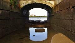 IMG_1881 (jorgeneto4) Tags: passagem reflexos tejo tagus água moinho