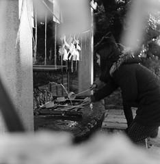 歯牙 (teeth) (Dinasty_Oomae) Tags: メオプタ フレクサレット フレクサレットiii meopta flexaret flexaretiii 白黒写真 白黒 monochrome blackandwhite blackwhite bw outdoor 千葉県 千葉 chiba 習志野市 習志野 narashino 神社 shirine 菊田神社 kikutashrine