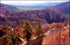 Les couleurs de Bryce Canyon (myvalleylil1) Tags: usa 1990 nationalpark utah brycecanyon