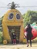 _P1D0215 (abcpathways_mkt) Tags: abc abcgroup abcpathways kindergarten pineapplefarm