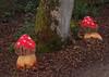 2017_12_0100 (petermit2) Tags: enchantedbrodsworth christmasilluminations brodsworthhall brodsworth doncaster southyorkshire yorkshire englishheritage garden gardens heritage heritagegarden flyagaric mushroom toadstool fungi fungus