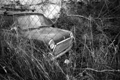 Captive (Nikos.K.) Tags: agirentis greece 2017 car isolation fence old blackandwhite film 135 expiredfilm fp4 ei200 pushed homebrewdeveloper d76 olympusom4ti zui zuiko 28mm28