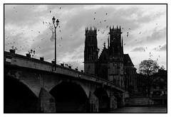_DSC1676 (db_copyright) Tags: églises ciel mouettes moselle saintmartin pontàmousson lowkey