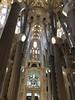 (zet11) Tags: sagradafamília barcelona españa