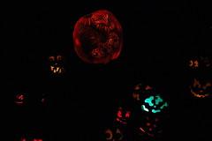 IMG_6461 (comtrag) Tags: jackolanterns rogerwilliamszoo rhodeisland halloween pumpkins pumpkincarving