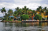 New River, Fort Lauderdale. (Infinity & Beyond Photography) Tags: tarpon new river ft fort lauderdale house palmtrees scenic florida