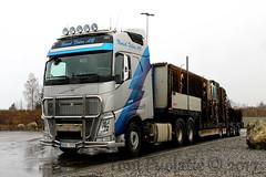 Umeå Fjärr AB HHA174 (puolatie95) Tags: volvo fh globetrotter renault magnum man tgx xxl umeå fjärr ab o´neills international transport ice trucking sweden ireland danmark semitrailer rekka rekkakuvat rekkakuvia trucks truckspotting truck rahti rahtari