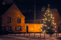 Xmas in Copenhagen (Meiday photography) Tags: copenhagen xmas københavn jul juletræ christmas tree nyboder nyboderplads winter vinter canon eos 550d t2i 50mm lights night snow sne painting maria meimei meimeipro