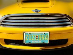 Zozobra (suenosdeuomi) Tags: zozobra fe santafe newmexico minicooper yellow licenseplate