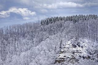 Blufftop Snow