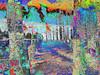 Xor_0014 (troutcolor) Tags: convert imagemagick evaluatesequence