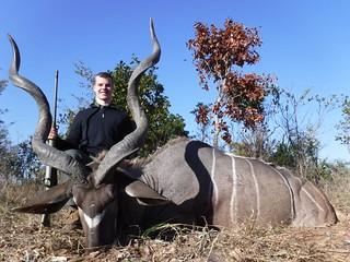 Zimbabwe Cape Buffalo Hunt 71