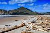 Tolaga Bay (Bobinstow2010) Tags: beach cliff wood sand driftwood sea tolagabay newzealand northisland