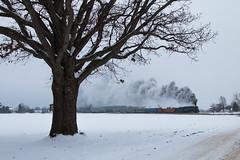 Fields of Snow and Engines of Steam (Jake Branson) Tags: train railroad steam locomotive engine pm pere marquette 1225 284 berkshire lima michigan mi owasso polar express