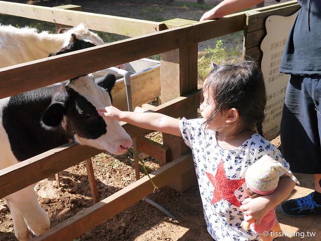 埔心農場-2460270