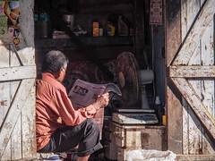 LR Mumbai 2015-992 (hunbille) Tags: birgittemumbai4lr india mumbai bombay bandra reading newspaper