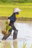 ChiangRai_2739 (JCS75) Tags: asia asie thailand thailande canon chiangrai