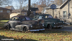 Two (rumimume) Tags: potd rumimume 2017 niagara ontario canada photo canon 80d sigma car old rust driveway yard forsale outdoor day