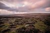 Sunrise on Tor (NikNak Allen) Tags: dartmoor devon moor moorland grass grasses sun cloud clouds horizon movement early morning low view look pink landscape longexposure