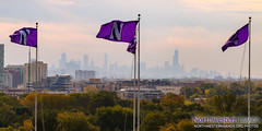 Chicago's Big Ten Team (Daniel M. Reck) Tags: b1gcats chicago dmrphoto date1022 evanston illinois numb numbhighlight northwestern northwesternathletics northwesternuniversity northwesternuniversitywildcatmarchingband unitedstates year2017 band city college education ensemble music musician school skyline skyscrapers university urban