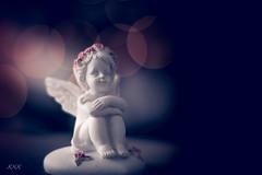 This darling angel... (babs van beieren) Tags: smileonsaturday angels angel bokeh angelsonearth 7dwf monday freetheme