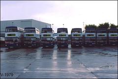 PL MK1 Metrobus Line up. (Vinyl 1979) Tags: 2382 2123 2394 2396 2006 2041 2416 2412 wmpte parklanegarage mcw 416x loa382x gog123w loa394x loa396x bok6v bok41v loa412x loa416x travelwestmidlands mcwmetrobus