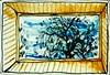 Vue par le Velux de la chambre. (cecile_halbert) Tags: dessin draw drawing drawer croquis sketch sketchers sketching sketchbook drawingbook carnet paysage landscape arbre tree fenêtre window usk urban urbain urbansketchers urbansketching ink encre aquarelle watercolor moleskine