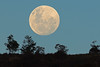Moonrise Jan 1 (david.john.lee) Tags: moonrise new year australia canberra