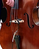 Good Vibrations on a D String (byzantiumbooks) Tags: bass doublebass strings