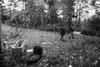 vedere oltre (roby rx) Tags: biancoenero abbandono ruderi desolazione degrado rovine