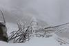 Minéral végétal neigeux (ZUHMHA) Tags: bulgarie bulgaria winter hiver buzludja texture matière neige snow ice gel glace nature tempêtedeneige macro formes form plant totalphoto