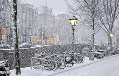 Snow blizzard in the Red Light district of Amsterdam (B℮n) Tags: bike snow covered bikes bicycle holland netherlands canals winter cold wester church street anne dutch people scooter gezellig cafés snowy snowfall atmosphere colorful walk walking cozy light corner water canal weather cool sunset file celcius mokum grachtengordel unesco world heritage sleding seagull meeuw seagulls meeuwen bycicle 1°c sun shadows sneeuw brug slippery glad flakes handheld wind code oudezijdsvoorburgwal sintjansbrug walletjes redlight amsterdam besneeuwde wit white fietst locked 50faves topf50 100faves topf100 200faves topf200