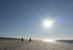 Riding (=Mirjam=) Tags: sonyrx100iii bergenaanzee riding horses odc onward northsea dunes januari 2018