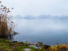 Lake_Naplas (Dreamaxjoe) Tags: naplástó lakenaplas fog köd budapest