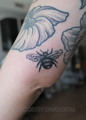Blackwork Tattoos (tattoosthisway) Tags: bee bumblebee tattoo toronto aliek blackwork etchy woodblock scrimshaw tattoosthisway best