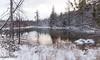 Winter Pond (maureen.elliott) Tags: rural pond nature water snow landscape trees reflections lateday lastlight december ontario
