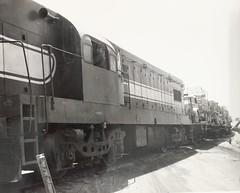 Israel Railways - ex-Egyptian State Railways Vlass G8 Bo-Bo diesel locomotive (General Motors) at El Arish, 1967 (HISTORICAL RAILWAY IMAGES) Tags: train israel railways diesel egypt esr isr locomotive gm קטר רכבת ישראל