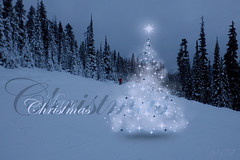 Merry Christmas 🎄 (~ Mariana ~) Tags: enchanting ~mariana~ christmas postcard light canada magic greetings merrychristmas snow mountains winter ski sky landscape forest holiday feast marculescueugendreamsoflightportal outstandingromanianphotographers