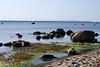 Laulasmaa rand (Jaan Keinaste) Tags: pentax k3 pentaxk3 eesti estonia harjumaa laulasmaa rand beatch tuulik windmill meri sea kivi stone
