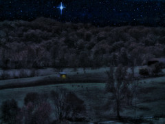 All is calm, all is bright (boriches) Tags: fields ozarks night christmas cows sheep barn moonlight stars
