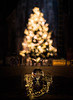 Christbaumkugel (martinpmayer) Tags: ulm weihnachten lensball christbaum münster xmas glaskugel fuji xpro2