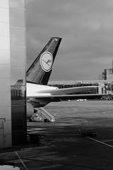 Queue d'avion (zuhmha) Tags: hiver winter francfort frankfurt airport aéroport plane reflet reflection vitre verre glass line lignes courbes curve geometry géométrie