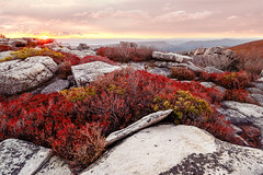 Dolly Sods (Vladimir Grablev) Tags: view sun westvirginia landscape dawn dollysods nature scenic mountains roskc formation morning travel wilderness sunrise rileyville virginia unitedstates us
