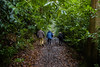 Walking in the woods..... (Dafydd Penguin) Tags: walking walk ramble counrtyside wood forest burrington combe somerset west country england rural leaves leica m10 summicron 35mm f2 asph