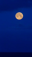 Full moon and dark blue sky