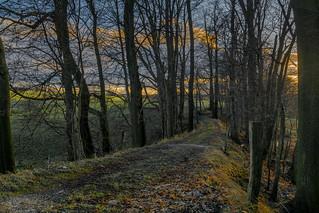 a walk at sunset - Spaziergang bei Sonnenuntergang