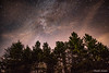 Trees' Courtain (simone_aramini) Tags: night nightlight landscape longexposures stars nikon outdoor trees nightscapes astrophotography umbria umbrialandscapes