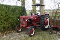 Tractor Mc Cornick D-432 in Wijlre 31-12-2017 (marcelwijers) Tags: tractor mc cornick d432 wijlre 31122017 d 432 traktor trekker schlepper nederland netherlands dutch niederlande paysbas limburgzuid